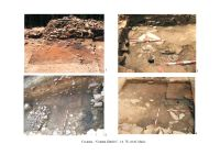 Chronicle of the Archaeological Excavations in Romania, 2006 Campaign. Report no. 69, Covasna, Curmătura (In Cier)<br /><a href='http://foto.cimec.ro/cronica/2006/069/rsz-1.jpg' target=_blank>Display the same picture in a new window</a>