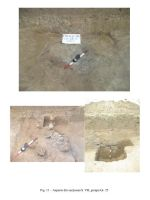 Chronicle of the Archaeological Excavations in Romania, 2006 Campaign. Report no. 82, Fulgeriş, La Trei Cireşi (Dealul Fulgeriş)<br /><a href='http://foto.cimec.ro/cronica/2006/082/rsz-10.jpg' target=_blank>Display the same picture in a new window</a>