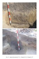Chronicle of the Archaeological Excavations in Romania, 2006 Campaign. Report no. 82, Fulgeriş, La Trei Cireşi (Dealul Fulgeriş)<br /><a href='http://foto.cimec.ro/cronica/2006/082/rsz-11.jpg' target=_blank>Display the same picture in a new window</a>