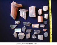 Chronicle of the Archaeological Excavations in Romania, 2006 Campaign. Report no. 93, Hârşova, Tell<br /><a href='http://foto.cimec.ro/cronica/2006/093/rsz-1.jpg' target=_blank>Display the same picture in a new window</a>