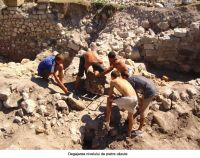 Chronicle of the Archaeological Excavations in Romania, 2006 Campaign. Report no. 93, Hârşova, Tell<br /><a href='http://foto.cimec.ro/cronica/2006/093/rsz-8.jpg' target=_blank>Display the same picture in a new window</a>