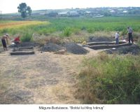 Chronicle of the Archaeological Excavations in Romania, 2006 Campaign. Report no. 117, Măgura, Teleor 003 (Buduiasca, Boldul lui Moş Ivănuş).<br /> Sector 01-poze-IMDA.<br /><a href='http://foto.cimec.ro/cronica/2006/117/rsz-12.jpg' target=_blank>Display the same picture in a new window</a>