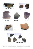 Chronicle of the Archaeological Excavations in Romania, 2006 Campaign. Report no. 137, Pasărea, La sud de sat<br /><a href='http://foto.cimec.ro/cronica/2006/137/rsz-1.jpg' target=_blank>Display the same picture in a new window</a>