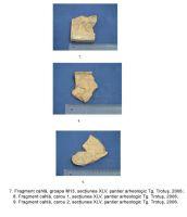 Cronica Cercetărilor Arheologice din România, Campania 2006. Raportul nr. 191, Târgu Trotuş<br /><a href='http://foto.cimec.ro/cronica/2006/191/rsz-2.jpg' target=_blank>Priveşte aceeaşi imagine într-o fereastră nouă</a>