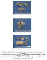 Cronica Cercetărilor Arheologice din România, Campania 2006. Raportul nr. 191, Târgu Trotuş<br /><a href='http://foto.cimec.ro/cronica/2006/191/rsz-3.jpg' target=_blank>Priveşte aceeaşi imagine într-o fereastră nouă</a>
