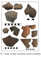 Chronicle of the Archaeological Excavations in Romania, 2006 Campaign. Report no. 199, Urlaţi, La Câmp (La Islaz)<br /><a href='http://foto.cimec.ro/cronica/2006/199/rsz-2.jpg' target=_blank>Display the same picture in a new window</a>