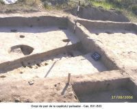 Chronicle of the Archaeological Excavations in Romania, 2006 Campaign. Report no. 207, Vlădeni, Coasta Belciugului<br /><a href='http://foto.cimec.ro/cronica/2006/207/rsz-1.jpg' target=_blank>Display the same picture in a new window</a>
