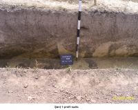 Chronicle of the Archaeological Excavations in Romania, 2006 Campaign. Report no. 207, Vlădeni, Coasta Belciugului<br /><a href='http://foto.cimec.ro/cronica/2006/207/rsz-8.jpg' target=_blank>Display the same picture in a new window</a>