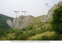 Chronicle of the Archaeological Excavations in Romania, 2006 Campaign. Report no. 209, Cetea, Pietri<br /><a href='http://foto.cimec.ro/cronica/2006/209/rsz-0.jpg' target=_blank>Display the same picture in a new window</a>