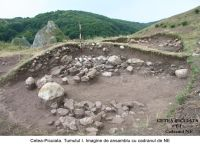 Chronicle of the Archaeological Excavations in Romania, 2006 Campaign. Report no. 209, Cetea, Pietri<br /><a href='http://foto.cimec.ro/cronica/2006/209/rsz-10.jpg' target=_blank>Display the same picture in a new window</a>