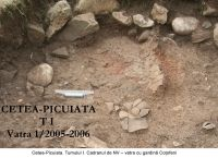 Chronicle of the Archaeological Excavations in Romania, 2006 Campaign. Report no. 209, Cetea, Pietri<br /><a href='http://foto.cimec.ro/cronica/2006/209/rsz-8.jpg' target=_blank>Display the same picture in a new window</a>