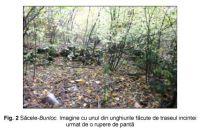 Cronica Cercetărilor Arheologice din România, Campania 2006. Raportul nr. 211, Săcele<br /><a href='http://foto.cimec.ro/cronica/2006/211/rsz-1.jpg' target=_blank>Priveşte aceeaşi imagine într-o fereastră nouă</a>