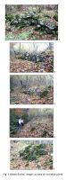 Cronica Cercetărilor Arheologice din România, Campania 2006. Raportul nr. 211, Săcele<br /><a href='http://foto.cimec.ro/cronica/2006/211/rsz-2.jpg' target=_blank>Priveşte aceeaşi imagine într-o fereastră nouă</a>