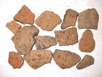 Cronica Cercetărilor Arheologice din România, Campania 2007. Raportul nr. 19, Brăduţ, Dealul Rotund (Muntele de Piatră)<br /><a href='http://foto.cimec.ro/cronica/2007/019-BRADUT-CV-DealulRotund-C/DSCF0706.jpg' target=_blank>Priveşte aceeaşi imagine într-o fereastră nouă</a>