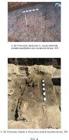 Cronica Cercetărilor Arheologice din România, Campania 2007. Raportul nr. 27, Bucureşti, str. Şepcari nr. 16<br /><a href='http://foto.cimec.ro/cronica/2007/027-BUCURESTI-B-CI-strFranceza-C/fig-4.jpg' target=_blank>Priveşte aceeaşi imagine într-o fereastră nouă</a>