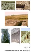 Chronicle of the Archaeological Excavations in Romania, 2007 Campaign. Report no. 88, Jurilovca, Capul Dolojman<br /><a href='http://foto.cimec.ro/cronica/2007/088-JURILOVCA-TL-Argamum-C/plansa-2.jpg' target=_blank>Display the same picture in a new window</a>