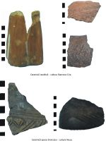 Chronicle of the Archaeological Excavations in Romania, 2007 Campaign. Report no. 108, Negrileşti, Şcoala Generală (La Punte, Pin, Curtea Şcolii)<br /><a href='http://foto.cimec.ro/cronica/2007/108-NEGRILESTI-GL-Zaharia-2/pl-sa3.jpg' target=_blank>Display the same picture in a new window</a>