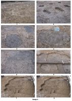 Chronicle of the Archaeological Excavations in Romania, 2007 Campaign. Report no. 111, Olteni, Cetatea Fetei (Leánykavár)<br /><a href='http://foto.cimec.ro/cronica/2007/111-OLTENI-CV-Cariera-3/plansa-v.jpg' target=_blank>Display the same picture in a new window</a>