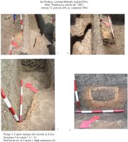 Chronicle of the Archaeological Excavations in Romania, 2007 Campaign. Report no. 122, Pasărea, La sud de sat<br /><a href='http://foto.cimec.ro/cronica/2007/122-PASAREA-IF-proprVatra-2/plansa-3.jpg' target=_blank>Display the same picture in a new window</a>