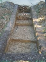 Chronicle of the Archaeological Excavations in Romania, 2007 Campaign. Report no. 158, Sic, Biserica reformată<br /><a href='http://foto.cimec.ro/cronica/2007/158-SIC-CJ-Biserica-reformata-4/fig-9.jpg' target=_blank>Display the same picture in a new window</a>