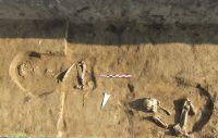 Cronica Cercetărilor Arheologice din România, Campania 2007. Raportul nr. 169, Sultana, Malu Roşu.<br /> Sectorul 01-poze-IMDA.<br /><a href='http://foto.cimec.ro/cronica/2007/169-SULTANA-CL-MaluRosu-1/sultana-necropola.JPG' target=_blank>Priveşte aceeaşi imagine într-o fereastră nouă</a>
