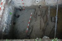 Cronica Cercetărilor Arheologice din România, Campania 2007. Raportul nr. 187, Timişoara, Freidorf<br /><a href='http://foto.cimec.ro/cronica/2007/187-TIMISOARA-TM-CastelHuniade-2/fig-5-s-2-palisada-si-santul-de-aparare-din-c-3-5.JPG' target=_blank>Priveşte aceeaşi imagine într-o fereastră nouă</a>