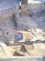 Chronicle of the Archaeological Excavations in Romania, 2007 Campaign. Report no. 193, Vlădeni, Coasta Belciugului<br /><a href='http://foto.cimec.ro/cronica/2007/193-VLADENI-IL-PopinaBlagodeasca-1/fig-2.jpg' target=_blank>Display the same picture in a new window</a>