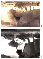 Chronicle of the Archaeological Excavations in Romania, 2008 Campaign. Report no. 7, Gara Banca, Şapte Case<br /><a href='http://foto.cimec.ro/cronica/2008/007/1.jpg' target=_blank>Display the same picture in a new window</a>