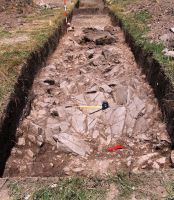Chronicle of the Archaeological Excavations in Romania, 2008 Campaign. Report no. 25, Craiva, Piatra Craivii<br /><a href='http://foto.cimec.ro/cronica/2008/025/2-s-iii-imagine-de-ansamblu.jpg' target=_blank>Display the same picture in a new window</a>