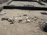 Chronicle of the Archaeological Excavations in Romania, 2008 Campaign. Report no. 26, Desa, La ruptură<br /><a href='http://foto.cimec.ro/cronica/2008/026/1-22-august-2008-252.jpg' target=_blank>Display the same picture in a new window</a>