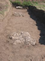 Chronicle of the Archaeological Excavations in Romania, 2008 Campaign. Report no. 26, Desa, La ruptură<br /><a href='http://foto.cimec.ro/cronica/2008/026/1-22-august-2008-264.jpg' target=_blank>Display the same picture in a new window</a>