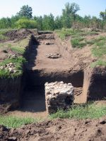 Chronicle of the Archaeological Excavations in Romania, 2008 Campaign. Report no. 26, Desa, La ruptură<br /><a href='http://foto.cimec.ro/cronica/2008/026/1-22-august-2008-296.jpg' target=_blank>Display the same picture in a new window</a>