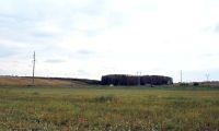 Cronica Cercetărilor Arheologice din România, Campania 2008. Raportul nr. 32, Grădinile, La Islaz<br /><a href='http://foto.cimec.ro/cronica/2008/032/2-gradinile-la-islaz-vedere-dinspre-est.JPG' target=_blank>Priveşte aceeaşi imagine într-o fereastră nouă</a>