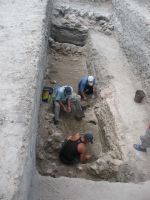 Chronicle of the Archaeological Excavations in Romania, 2008 Campaign. Report no. 34, Hârşova, Tell<br /><a href='http://foto.cimec.ro/cronica/2008/034/foto-2-nivelul-de-mortar-din-partea-centrala-a-sectiunii.jpg' target=_blank>Display the same picture in a new window</a>