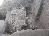 Chronicle of the Archaeological Excavations in Romania, 2008 Campaign. Report no. 34, Hârşova, Tell<br /><a href='http://foto.cimec.ro/cronica/2008/034/foto-3-zidul-din-partea-centrala-a-sectiunii.jpg' target=_blank>Display the same picture in a new window</a>