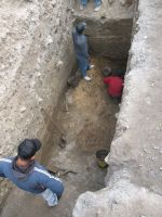 Chronicle of the Archaeological Excavations in Romania, 2008 Campaign. Report no. 34, Hârşova, Tell<br /><a href='http://foto.cimec.ro/cronica/2008/034/foto-5-pe-restul-de-zid-din-mijlocul-sectiunii.jpg' target=_blank>Display the same picture in a new window</a>