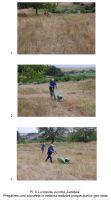 Cronica Cercetărilor Arheologice din România, Campania 2008. Raportul nr. 43, Luncaviţa, Cetăţuia<br /><a href='http://foto.cimec.ro/cronica/2008/043/pl-ii-pregatirea-in-vederea-prospectiunilor-geo-radar.jpg' target=_blank>Priveşte aceeaşi imagine într-o fereastră nouă</a>