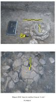 Chronicle of the Archaeological Excavations in Romania, 2008 Campaign. Report no. 46, Măgura, Teleor 003 (Buduiasca, Boldul lui Moş Ivănuş).<br /> Sector 00-poze.<br /><a href='http://foto.cimec.ro/cronica/2008/046/00-poze/3.jpg' target=_blank>Display the same picture in a new window</a>