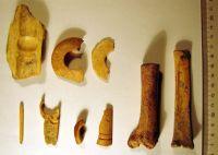 Chronicle of the Archaeological Excavations in Romania, 2008 Campaign. Report no. 46, Măgura, Teleor 003 (Buduiasca, Boldul lui Moş Ivănuş).<br /> Sector 01-poze-IMDA.<br /><a href='http://foto.cimec.ro/cronica/2008/046/01-poze-IMDA/beldiman-sztancs-mgr-2007-imda-fig-14.jpg' target=_blank>Display the same picture in a new window</a>