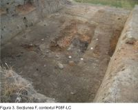 Chronicle of the Archaeological Excavations in Romania, 2008 Campaign. Report no. 65, Pietrele, Gorgana<br /><a href='http://foto.cimec.ro/cronica/2008/065/fig-3-sectiunea-f.jpg' target=_blank>Display the same picture in a new window</a>