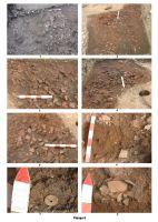 Chronicle of the Archaeological Excavations in Romania, 2008 Campaign. Report no. 94, Păuleni-Ciuc, Dâmbul Cetăţii (Dealul Cetăţii, Vardomb).<br /> Sector album2.<br /><a href='http://foto.cimec.ro/cronica/2008/094/plansa-ii.jpg' target=_blank>Display the same picture in a new window</a>