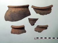 Chronicle of the Archaeological Excavations in Romania, 2008 Campaign. Report no. 136, Buciumeni<br /><a href='http://foto.cimec.ro/cronica/2008/136/buftea3-ceramica-dridu.jpg' target=_blank>Display the same picture in a new window</a>