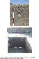 Chronicle of the Archaeological Excavations in Romania, 2008 Campaign. Report no. 168, Negrileşti, Şcoala Generală (La Punte, Pin, Curtea Şcolii)<br /><a href='http://foto.cimec.ro/cronica/2008/168/plansa-07.jpg' target=_blank>Display the same picture in a new window</a>