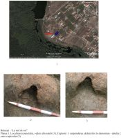 Chronicle of the Archaeological Excavations in Romania, 2008 Campaign. Report no. 172, Pasărea, La sud de sat<br /><a href='http://foto.cimec.ro/cronica/2008/172/plansa-1.jpg' target=_blank>Display the same picture in a new window</a>