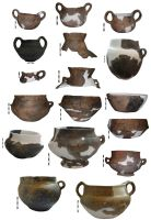 Chronicle of the Archaeological Excavations in Romania, 2009 Campaign. Report no. 111, Câmpina<br /><a href='http://foto.cimec.ro/cronica/2009/preventive/111/CAMPINA-PH-planse-vase-2009.jpg' target=_blank>Display the same picture in a new window</a>