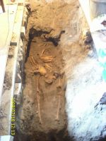 Chronicle of the Archaeological Excavations in Romania, 2009 Campaign. Report no. 122, Focşani, Gologani<br /><a href='http://foto.cimec.ro/cronica/2009/preventive/122/FOCSANI-VN-Biserica-Sf-Nicolae72.JPG' target=_blank>Display the same picture in a new window</a>