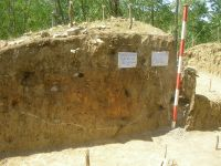 Chronicle of the Archaeological Excavations in Romania, 2009 Campaign. Report no. 154, Răducăneni, Bâzga (Cetăţuie)<br /><a href='http://foto.cimec.ro/cronica/2009/preventive/154/bazga2.JPG' target=_blank>Display the same picture in a new window</a>
