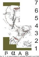 Cronica Cercetărilor Arheologice din România, Campania 2009. Raportul nr. 6, Beclean, Băile Figa<br /><a href='http://foto.cimec.ro/cronica/2009/sistematice/006/22-BECLEAN-BN-BaileFiga.jpg' target=_blank>Priveşte aceeaşi imagine într-o fereastră nouă</a>