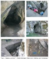 Chronicle of the Archaeological Excavations in Romania, 2009 Campaign. Report no. 15, Cheia, Vatra satului.<br /> Sector ILUSTRATIE-CHEIA-2017.<br /><a href='http://foto.cimec.ro/cronica/2009/sistematice/015/1-Pestera-La-Izvor.jpg' target=_blank>Display the same picture in a new window</a>