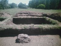 Chronicle of the Archaeological Excavations in Romania, 2009 Campaign. Report no. 19, Desa, La ruptură<br /><a href='http://foto.cimec.ro/cronica/2009/sistematice/019/DESA-DJ-11.JPG' target=_blank>Display the same picture in a new window</a>